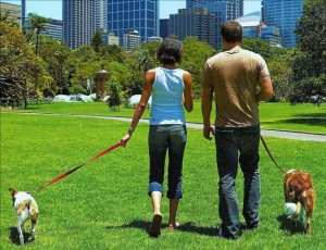 Spend time outside. What is after losing weight?
